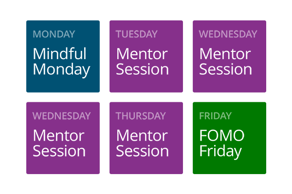 Mentor Session Access
