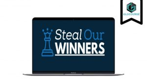Steal Our Winners Lifetime Edition by Rich Schefren